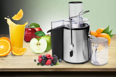 Powerful 850W Stainless Steel Juicer