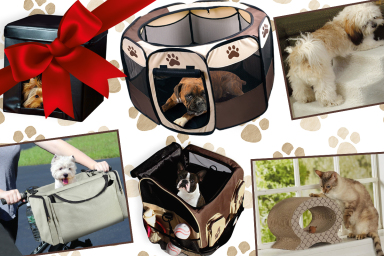 Pet Accessories For Home & Travel