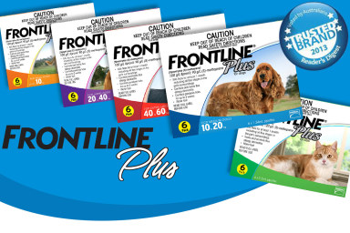 Frontline Plus For Cats & Dogs