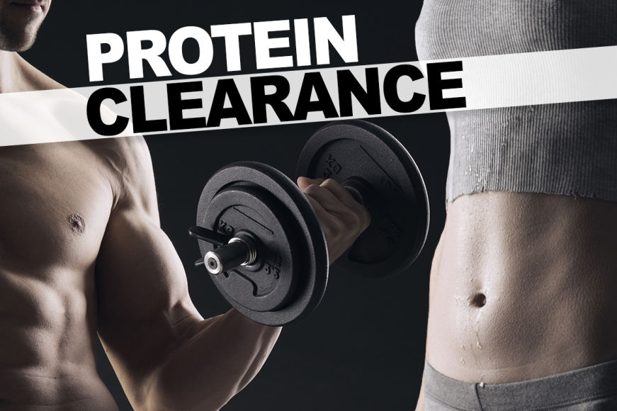 Protein Clearance
