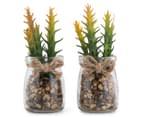 Set Of 2 6x12cm Twig Succulents In Glass Jar 1