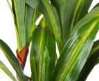 Cooper & Co. Artificial 73cm Yucca Plant - Yellow/Green 6