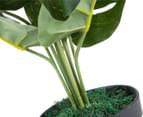Cooper & Co. Artificial 60cm Monstera Plant - Green 5