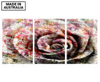Grunge Rose Triptych 45x30cm Canvas Wall Art 1