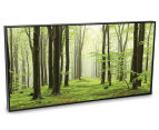 Mossy Mist 50x25cm Framed Wall Art 2