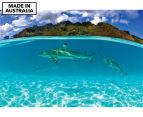 Reef Shark by Adam Duffy 75x50cm Framed Canvas Wall Art 1