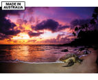 Sleeping Honu by Adam Duffy 75x50cm Framed Canvas Wall Art 1