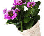 Set of 2 Artificial 28x24cm Potted Pansies - Purple 4