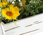Set of 2 Artificial 20x18cm Flower Mix in Shabby Chic Box - Yellow 6