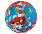 Paw Patrol Small Sports Ball 4