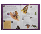 2-Pack Wow Insects Books 6