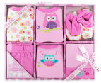 Baby Girl 0-6M Owl 6-Piece Gift Set - Pink 1