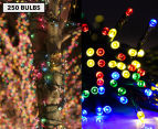 AC Powered LED Party Lights 250 -Pack - Multi-Colour 1