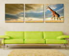 3-Part 57x57cm Canvas Set - Giraffe in Clouds 2
