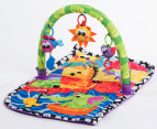 Playgro Giggle Beach Gym 3